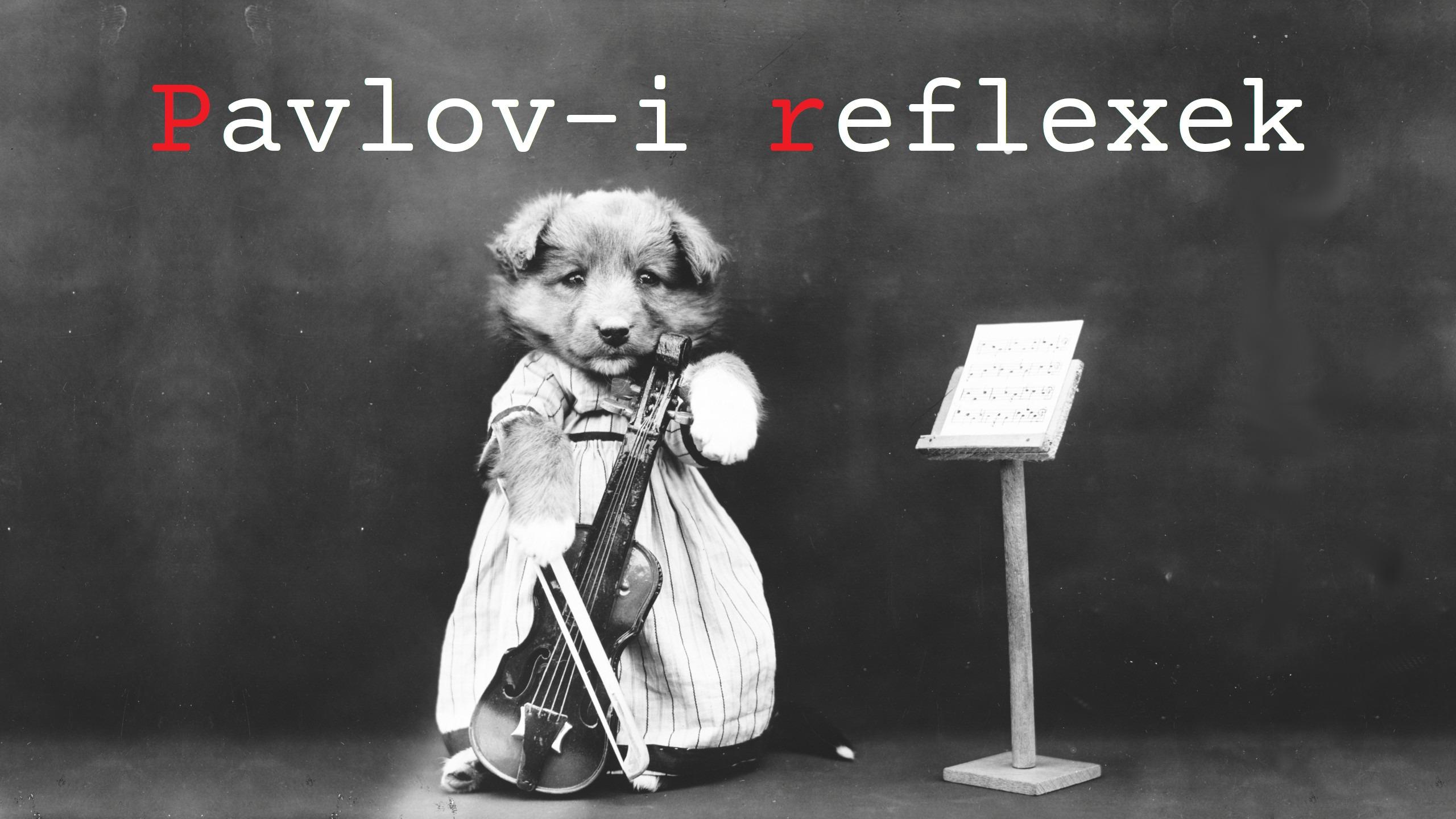 Pavlov-i reflexek